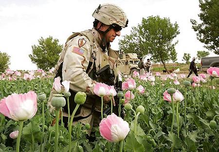 White House, CIA and NATO Involved in Heroin Smuggling