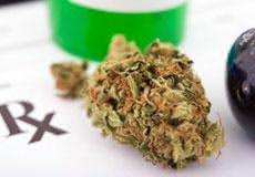 Cannabis Provides Dramatic Benefit for Chronic Diseases