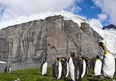 The Secret Antarctic Cover-Up