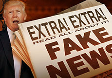 The Fake News Business